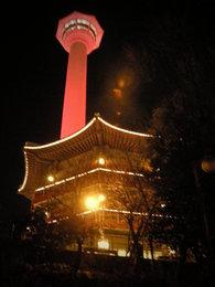 釜山タワー (1).jpg